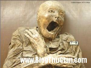 cac bao tang dang so nhat the gioi3 300x224 Các bảo tàng rùng rợn nhất thế giới.