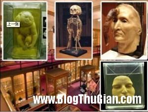 cac bao tang dang so nhat the gioi4 300x227 Các bảo tàng rùng rợn nhất thế giới.
