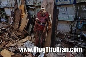rung minh nghia trang rai rac thi the nguoi chet dung dung giua duong2 300x200 Chuyện lạnh người thành phố zombie