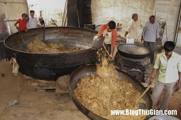 rung minh ngoi den nuoi 20000 con chuot3 Ngôi đền duy nhất trên thế giới nuôi 20.000 con chuột