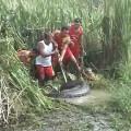Hành động đáng tuyên dương ! Họ đang cố gắng cứu con Giun khỏi chết đuối :v