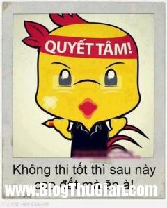 kt cdm3613 muathi2 240x300 Những câu chúc thi tốt bằng nhiều thứ tiếng