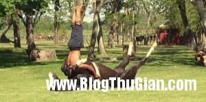 140410 2ngua 63833 300x149 Yoga Ngựa   Môn nghệ thuật kỳ lạ nhất