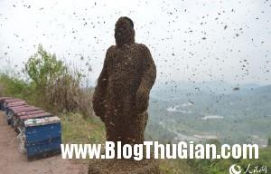 MAIN20140410063900044099673101 1724 2587 1397113947 300x192 Người đàn ông cho ong đậu kín người để xác lập kỷ lục