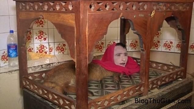 vat 1 Sinh vật nửa người nửa cáo thu hút rất đông khách du lịch ở Pakistan