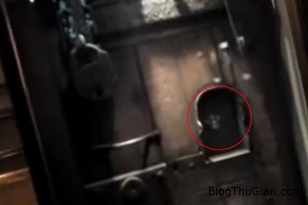 140426 2thanh 26de9 Bí ẩn chiếc đầu của Thánh Oliver Plunkett lơ lửng giữa không trung