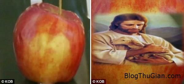 140629 3tao 26cc5 Hình chúa Giê   su xuất hiện trên quả táo