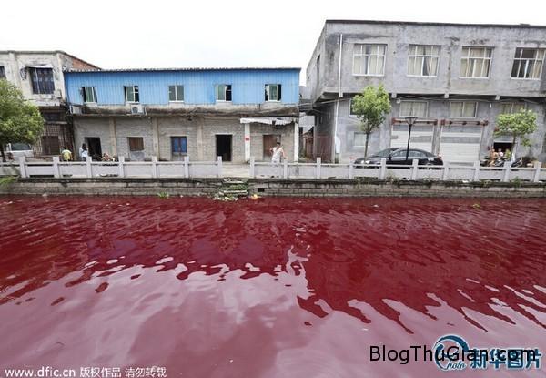 140725 1song e4fba Phát hoảng khi nước con sống đột nhiên chuyển sang màu đỏ như máu