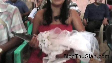 Crocodile wedding 1 9cdf4 Đám cưới của người với cô dâu  cá sấu