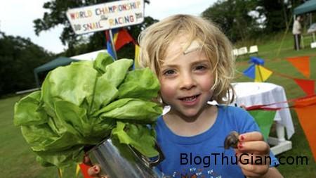 Snail race 1 3f00a Cậu bé 5 tuổi trở thành nhà vô địch thế giới cuộc đua ốc sên