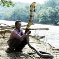 Snake-man-1-30e92