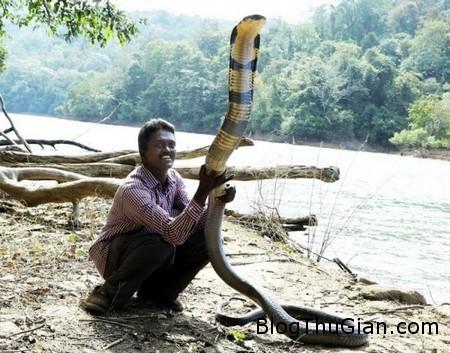 Snake man 1 30e92 Gặp gỡ người đàn ông có tình yêu đặc biệt với loài rắn