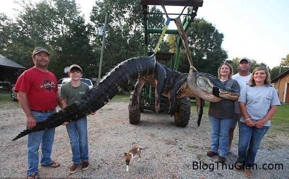 90082e7eb2634b80214b2bbcc0b4e9 Tóm gọn quái vật cá sấu gần 500kg sau 2 ngày mai phục