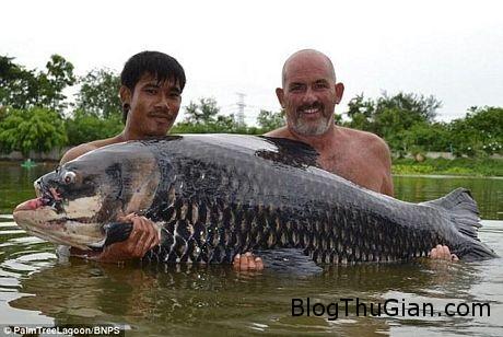 tn 2 f8724 Bắt được cá chép nặng nhất thế giới