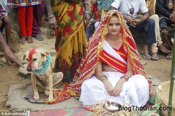 140903 1cuoi f9b68 Đám cưới với chó để hóa giải lời nguyền