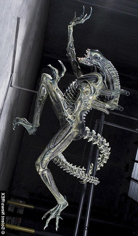 140918 3ng 4496a Tìm thấy xác chết sinh vật lạ dài 15cm có hình dáng giống những con quái vật ngoài hành tinh