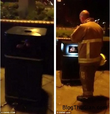 Stuck recycel bin 1 1e3d6 Đùa dại kết quả là mắc kẹt trong thùng rác không ra được
