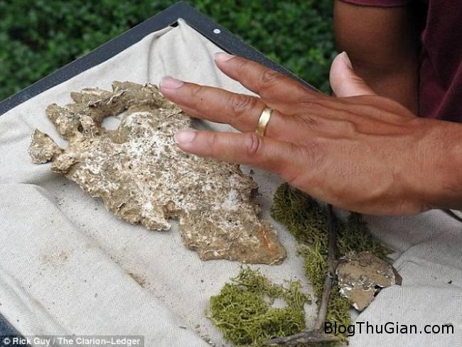 phat hien dau chan khong lo o my Phát hiện dấu chân của quái vật Bigfoot trong truyền thuyết