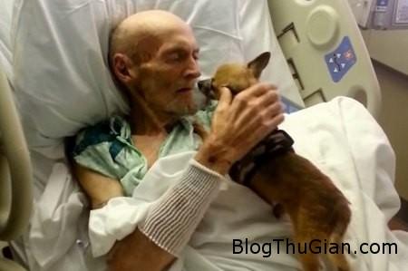 Love dog 1 bcdc4 Chỉ cần ôm chó cưng cũng có thể giúp bênh nhân hồi phục