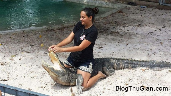 nguoi phu nu mang thai 8 thang choi dua cung ca sau Người phụ nữ có bầu 8 tháng chơi đùa với cá sấu