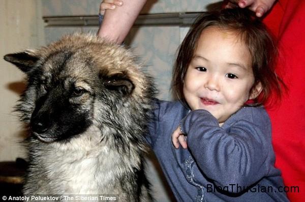 lac giua rung 12 ngay be gai 4 tuoi song sot nho chu cho bao ve Bé gái 4 tuổi lạc trong rừng suốt 12 ngày , sống sót nhờ sự bảo về của chú chó