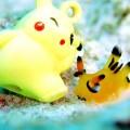 oc-sen-bien-ngo-nghinh-co-ngoai-hinh-giong-pikachu