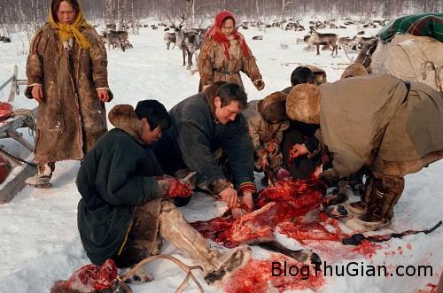 rung minh canh bo toc an thit ca song va uong mau tuoi Tập tục uống máu tươi ăn thịt sống khiến ai cũng phải rùng mình