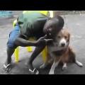 Phím 3 để xem em chó nặn mụn cho thanh niên da đen =)))