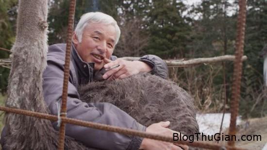 Naoto Matsumara2 550x309 bee6c Cuộc sống của người đàn ông nhiễm phóng xạ cao nhất nước Nhật và bầy gia súc của mình