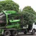 Phải VN mình có cái này thì đâu cần phải chặt cây trăm tuổi để bảo vệ môi trường