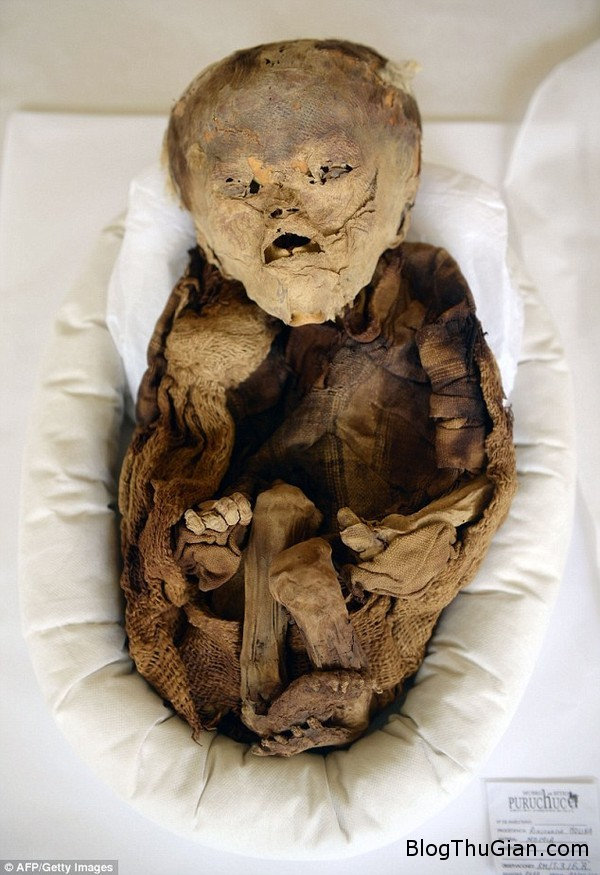 phat hien xac uop em be thoi tien inca tai peru 20150321151915584 Xác ướp em bé có niên đại 1000 năm được tìm thấy ở Peru