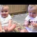Cặp sinh đôi bắt chước hắt xì theo bé cực cute