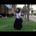 Em gái mặc đồng phục học sinh quẩy tung nóc trường …