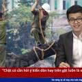 [OFFICIAL] RapNews 32: đề tài chém cây xanh vẫn chưa hết nóng