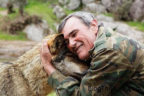 1439859303 1439806404 soi2 Người đàn ông sống chung với bầy sói suốt 12 năm