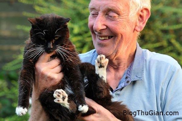 cat 9505 1411438247 Con mèo sống thọ nhất 113 tuổi
