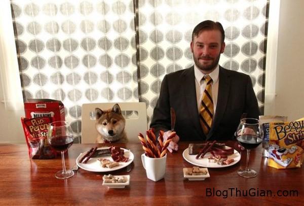 dog 2081 1421118786 Làm giàu bằng nghề nếm thức ăn cho chó