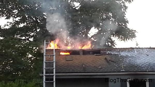 fire 2166 1405563784 Giết một con nhện bằng cách đốt nhà