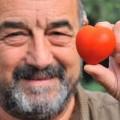 tomato-4757-1411182532