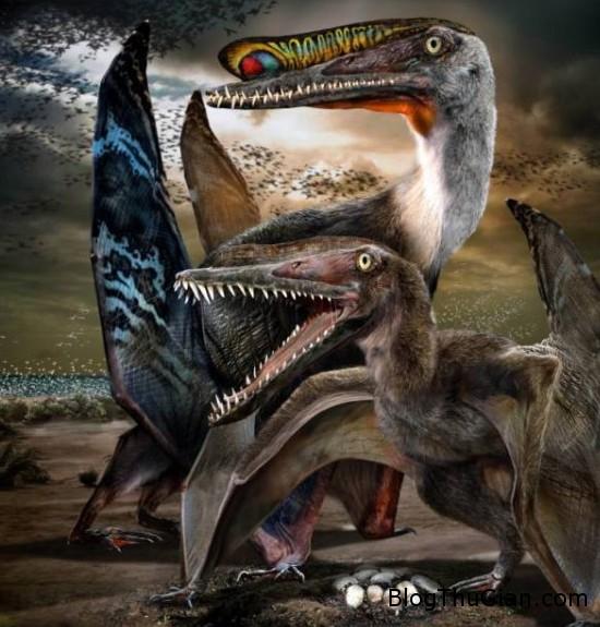 trung2 3428 1402111156 Trung Quốc : Tìm thấy quả trứng khủng long hóa thạch còn nguyên vẹn