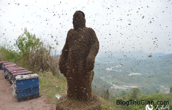 MAIN20140410063900044099673101 1724 2587 1397113947 Người đàn ông với kỷ lục cho hàng trăm con ong đậu kín khắp người