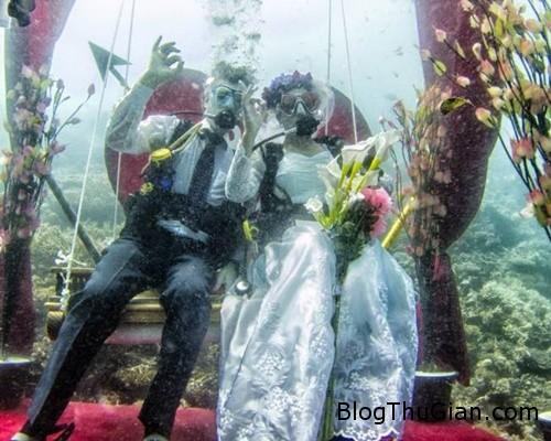 dam cuoi2 4126 1386643057 Cặp đôi tổ chức đám cưới ở dưới Ấn Độ Dương