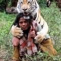 tiger1-859682-1368292137_500x0