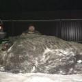 VNE-Giant-Boar-JPG-9151-1449656697