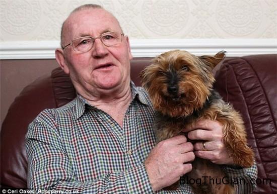 chu cho da 25 tuoi nhung van bi nham la cho con 2 Chú chó nhiều tuổi nhất Anh Quốc vẫn bị nhầm là chó con