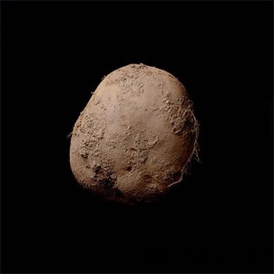 pic 1 7057 1453437909 Bức chân dung củ khoai tây có giá hơn triệu đô
