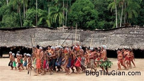 soc voi nghi thuc truong thanh cua gai trinh yanomami 1 Nghi thức trưởng thành vô cùng khắc nghiệt của thiếu nữ bộ tộc Yanomami
