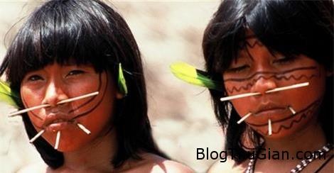 soc voi nghi thuc truong thanh cua gai trinh yanomami 2 Nghi thức trưởng thành vô cùng khắc nghiệt của thiếu nữ bộ tộc Yanomami