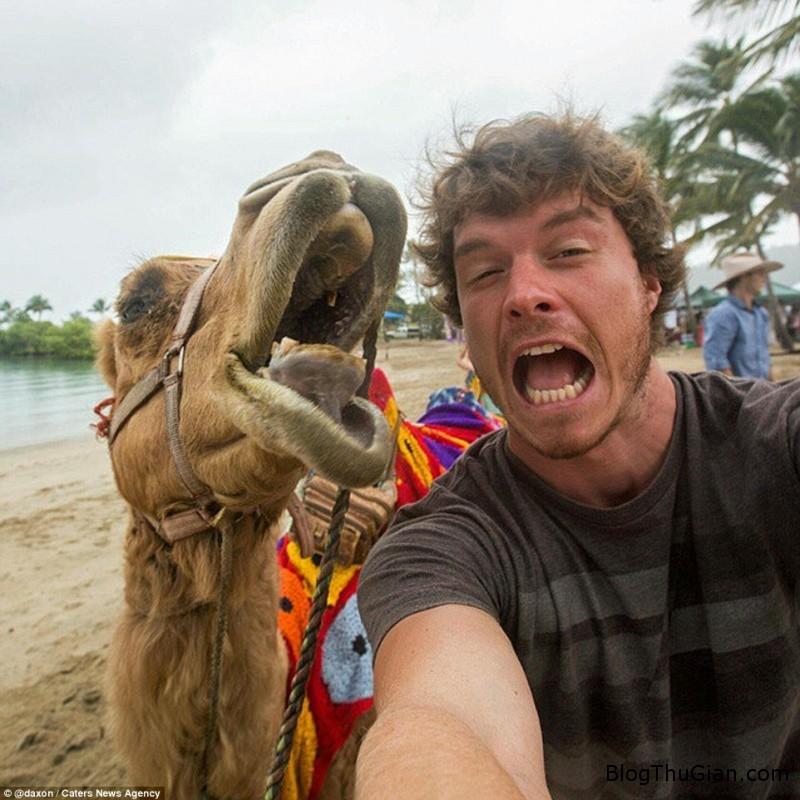 tinhhoa.net STNzns 20151226 chang trai co biet tai du do cac loai dong vat cung chup anh selfie Chàng trai có biệt tài làm quen và chụp ảnh selfie với động vật