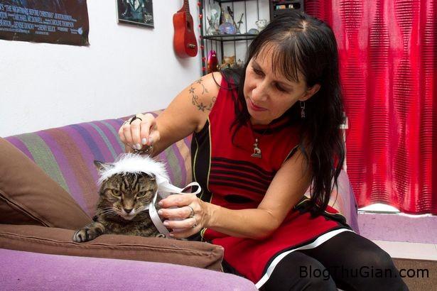 ky la chuyen nguoi cuoi 2 chu meo suot 16 nam3 Người phụ nữ tổ chức cưới hai chú mèo suốt 16 năm